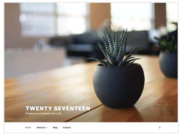 2017 wordpress theme