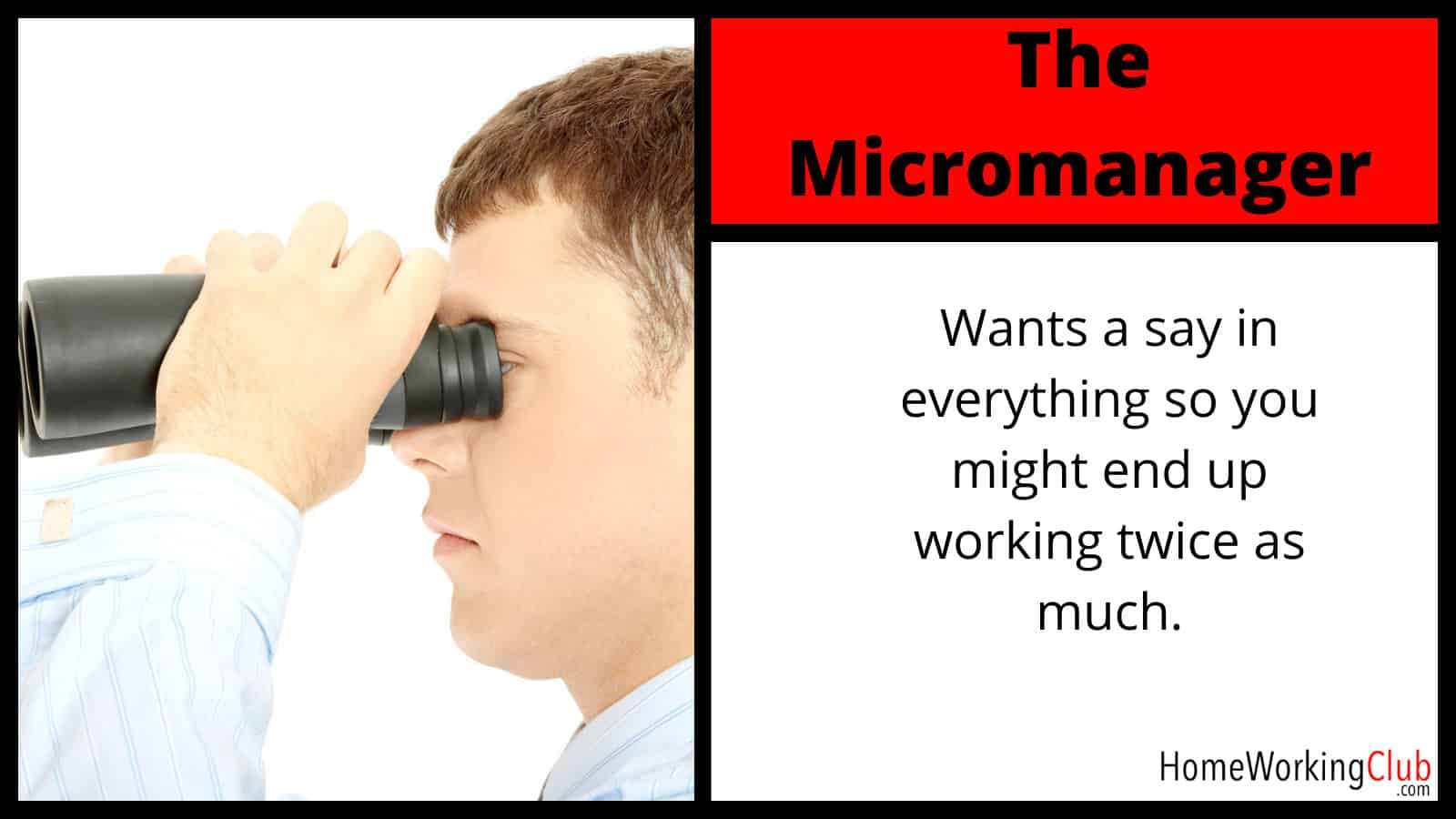 Client Type: The Micromanager
